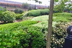 Wolverton Park